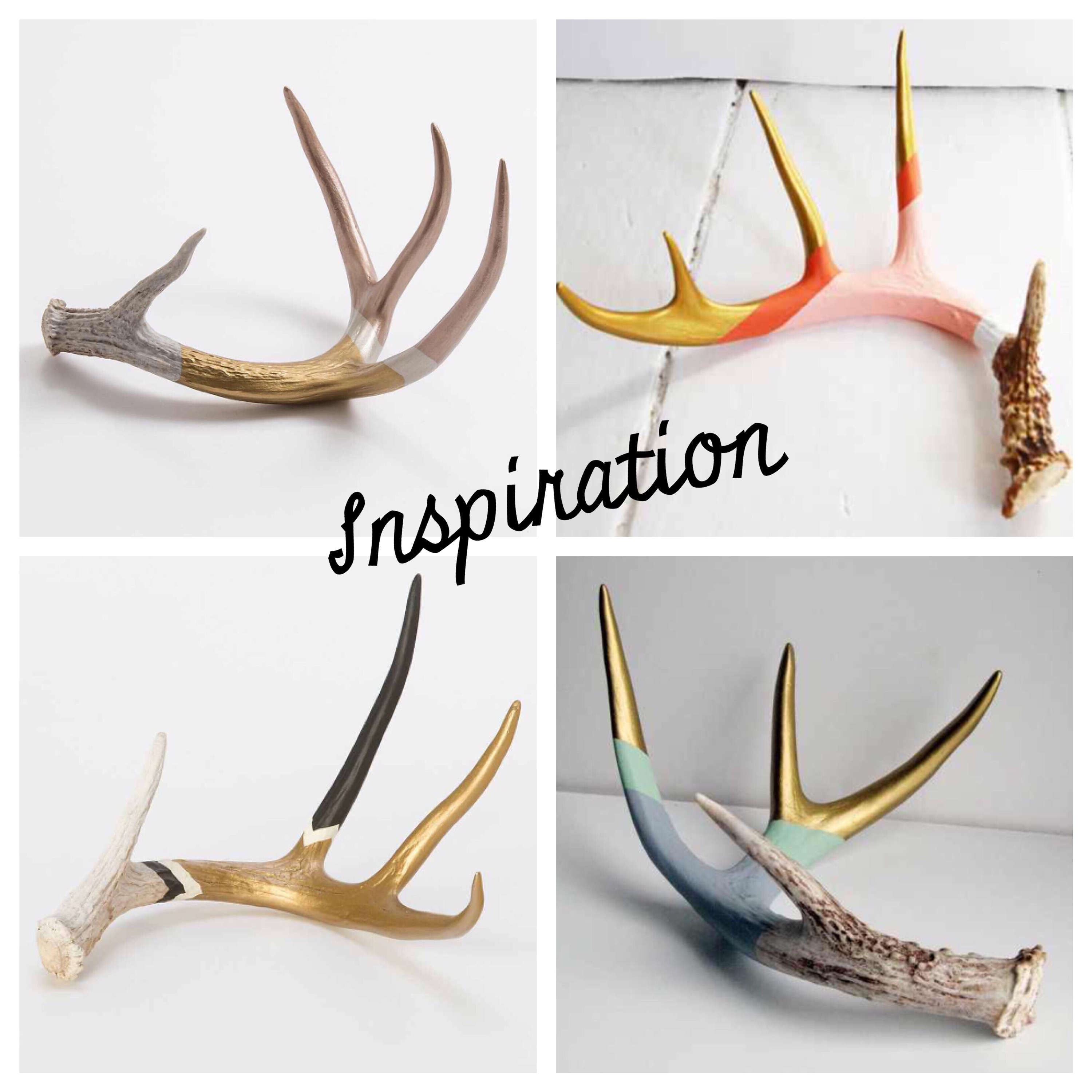 Painted antler decor for Antlers decoration